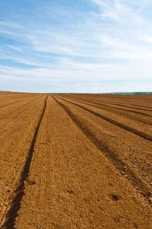 plowed: Plowed Fields in Israel