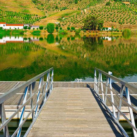 douro: Mooring Line on the River Douro, Portugal