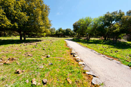 golan: Park on the Golan Heights in Israel