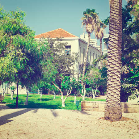 resplendence: Park with Old Houses after Reconstruction in Tel Aviv