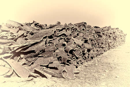 corkwood: Drying of Corkwood for Making Wine Corks in Portugal, Stylized Photo Stock Photo