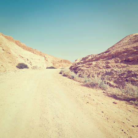 west bank: Dirt Road in the Judean Desert on the West Bank Stock Photo