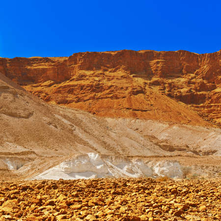 judean desert: Canyon in the Judean Desert on the West Bank