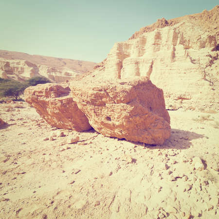 west bank: Canyon in the Judean Desert on the West Bank