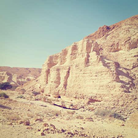 negev: Big Stones of  Negev Desert, Israel Stock Photo
