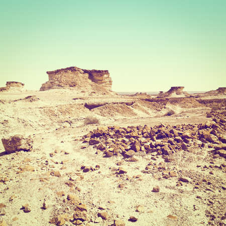 canyon negev: Stony Canyon of the Negev Desert in Israel