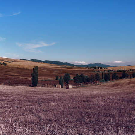 Italian Landscape with Many Hay Bales, Vintage Style Toned Picture