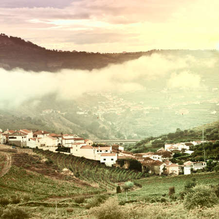 Vineyards on the Hills of Portugal at Sunset, Vintage Style Toned Picture Stock Photo