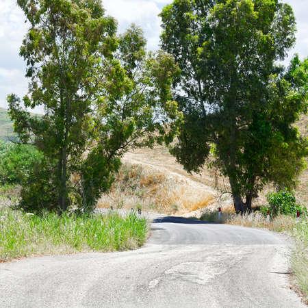 broken hill: Old Broken Road between Spring  Fields of Sicily