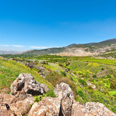 Golan Heights in the Spring