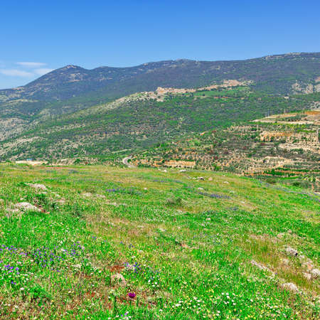 the golan heights: Golan Heights in the Spring