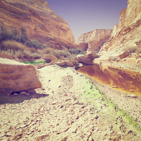 canyon negev: Canyon En Avedat of the Negev Desert in Israel, Instagram Effect