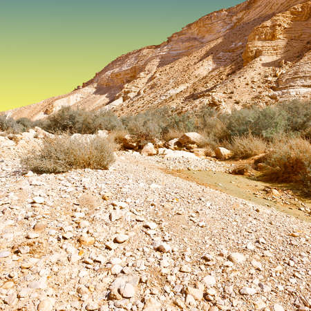 Canyon En Avedat of the Negev Desert in Israel at Sunset