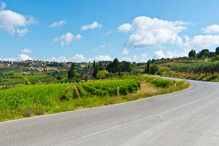 olive groves: Italian Village near the Road Surrounded by Vineyards and Olive Groves Stock Photo
