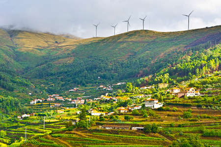 portugal agriculture: Modern Wind Turbines Producing Energy over the Vineyards in Portugal