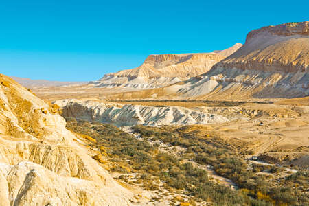 negev: Stones of Negev Desert in Israel Stock Photo