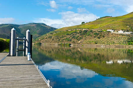 portugal agriculture: Mooring Line on the River Douro in Portugal Stock Photo