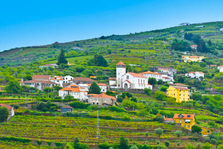 Village with Church Surrounded by Vineyards on the Hills of Portugal