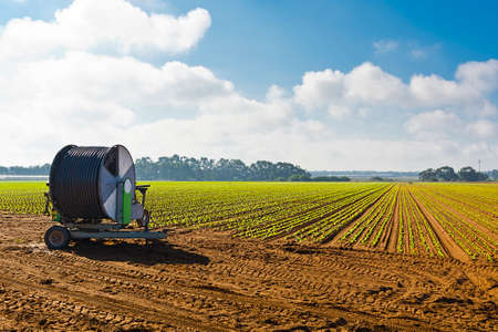 portugal agriculture: Sprinkler Irrigation on a Field in Portugal