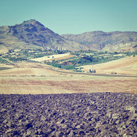 olive groves: Olive Groves and Plowed Sloping Hills of Sicily in Spring, Instagram Effect