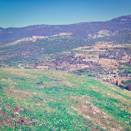 Golan Heights in the Spring, Instagram Effect