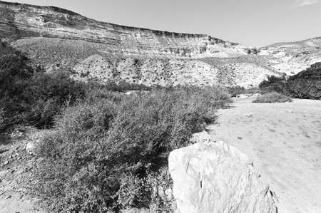 canyon negev: Rocky hills of the Negev Desert in Israel. Breathtaking landscape of the desert rock formations in the Southern Israel Desert. Black and white picture