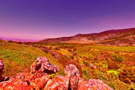 Golan Heights in the Spring at Sunset