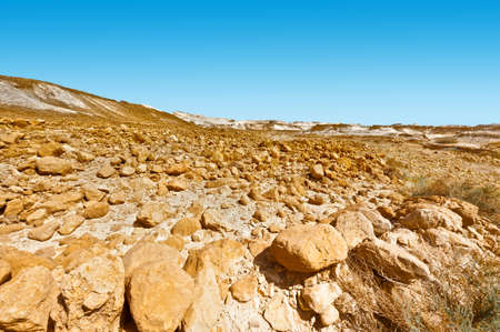 canyon negev: Rocky hills of the Negev Desert in Israel. Breathtaking landscape of the desert rock formations in the Southern Israel Desert.