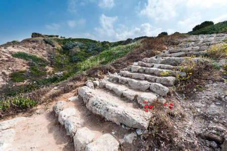 israeli: Dunes on the Shore of the Mediterranean Sea in Israel.  Spring flowers in the Israeli Apollonia national park. Remnants of the stairs in archaeological excavations