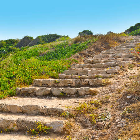 israeli: Ruins of the crusader fortress of the city Arsour in Israel. Dunes on the shore of the Mediterranean sea. Spring flowers in the Israeli Apollonia national park.