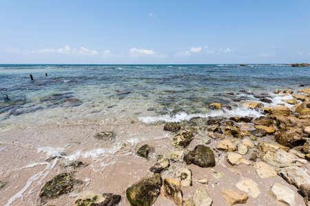 israeli: Israeli shore of the Mediterranean Sea. Rocky beach in Israel