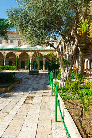 Garden in the courtyard of Muslim mosque in the old city of Akko. Al-Jazzar mosque as fine example of the Ottoman architecture in old Acre, Israel. Stock Photo