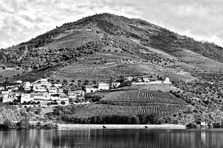 portugal agriculture: Portuguese Village Surrounded by Vineyards on the Banks of the River Douro, Stylized Photo