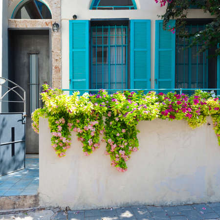Windows Decorated with Flower in Tel Aviv