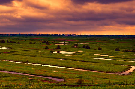 Agriculture on Land Reclaimed from the See in Netherlands at sunset. Tidal marsh and meadows formed by dams in Holland