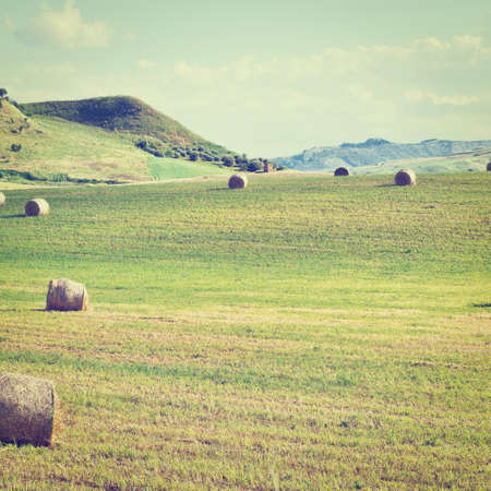 Landscape of Sicily with Many Hay Bales,