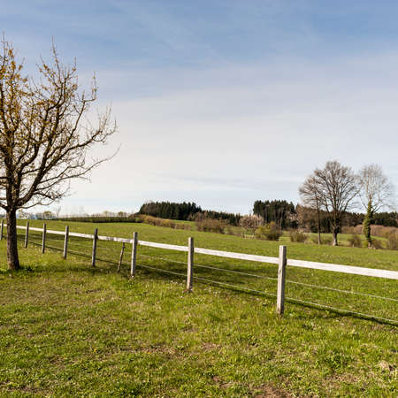 Fenced corral for cattle in Switzerland. Swiss landscape with meadows and forest Stock Photo