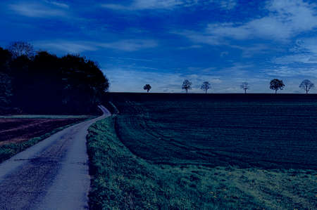 Country road between spring fields with green grass in Belgium at night. Belgian landscape with meadow and pasture
