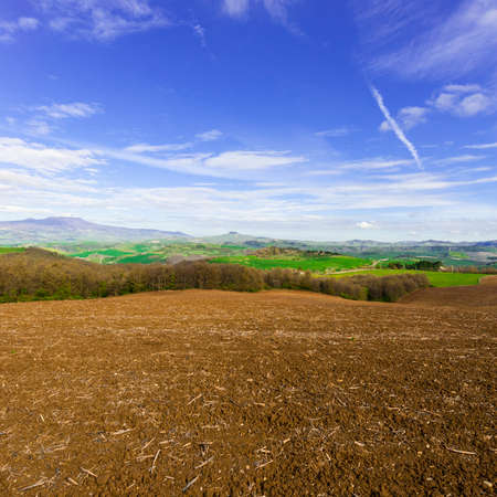 arando: Plowed sloping hills of Tuscany in the spring. Rural landscape with field ready for sowing