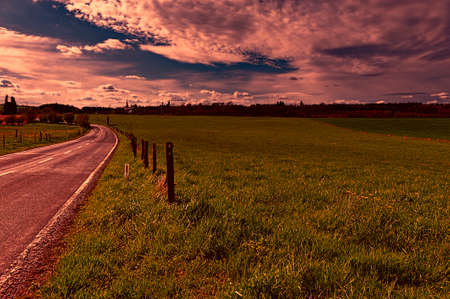 Country road between spring fields with green grass in Belgium at sunset. Belgian landscape with meadow and pasture