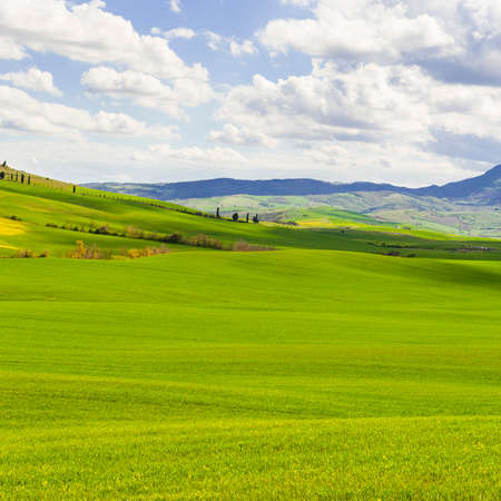 Italian landscape with meadows early in the spring. Agriculture in Italy, fields, pastures and farmhouses on the hill.
