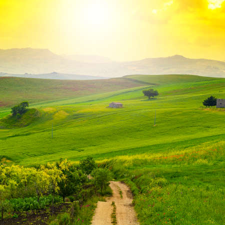 Sicilian landscape at sunrise, hills, fields, flowers, pasture and sunlight Imagens