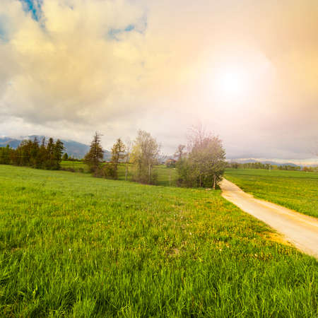 Dirt path in Piedmont on the background of snow capped Italian Alps. View of the mountain valley with  road at sunrise