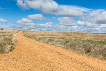 Autumn fields in Spain after harvesting. Service dirt road for agricultural production