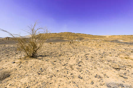 Rocky hills of the Negev Desert in Israel. Breathtaking landscape and nature of the Middle East. Stock Photo