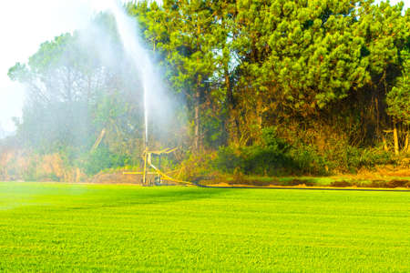 Sprinkler irrigation system at the field in Portugal