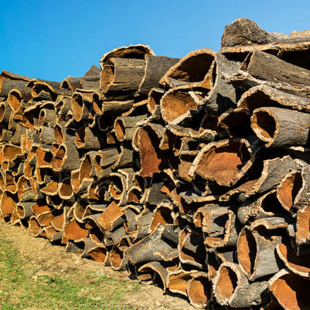Drying of corkwood for making wine corks in Portugal