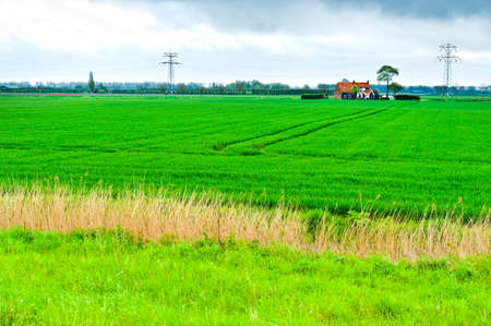 Agriculture on Land Reclaimed from the See in Netherlands. Tidal marsh and meadows formed by dams in Holland Stockfoto - 97484734