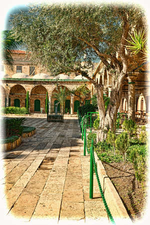 Garden in the courtyard of Muslim mosque in the old city of Akko. Al-Jazzar mosque as fine example of the Ottoman architecture in old Acre, Israel. Vintage style toned picture