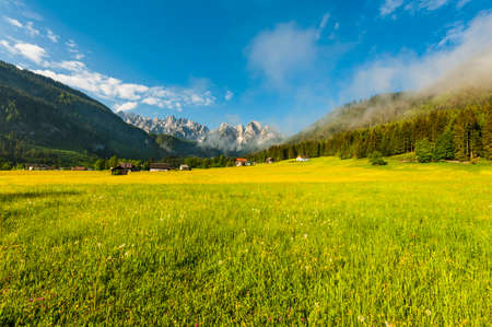 Austrian landscape with forests and meadows on the background of snow-capped Alps in early morning. Agriculture in Austria, fields and pastures.
